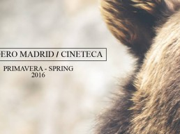 madrid-surf-film-festival